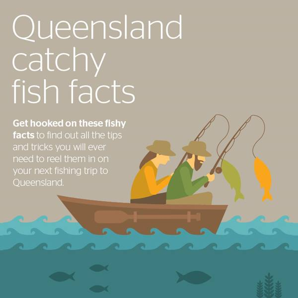 Fishy Facts Infographic