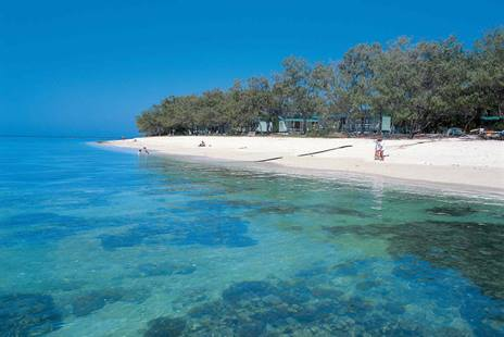Explore Lady Elliot Island