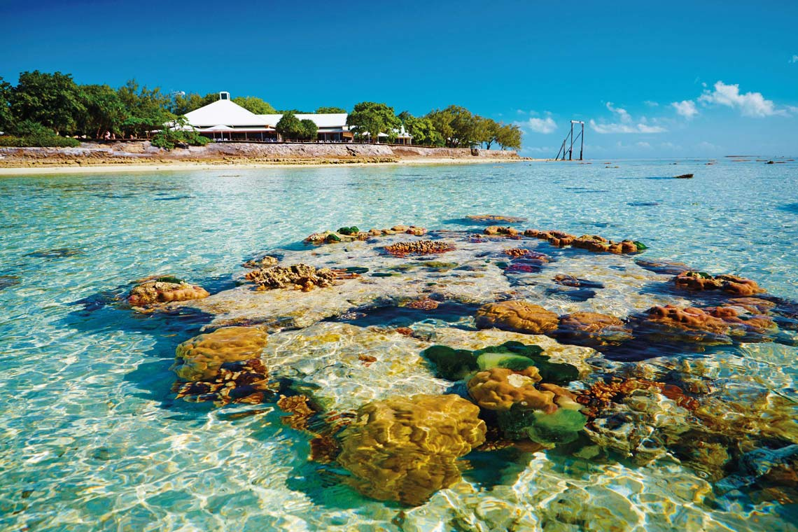 Backpackers Heron Island Australia