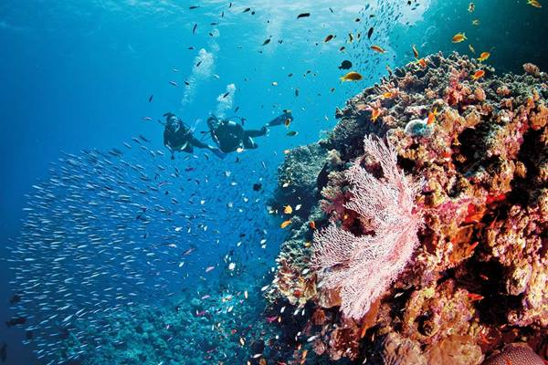 100 things to do on the Great Barrier Reef