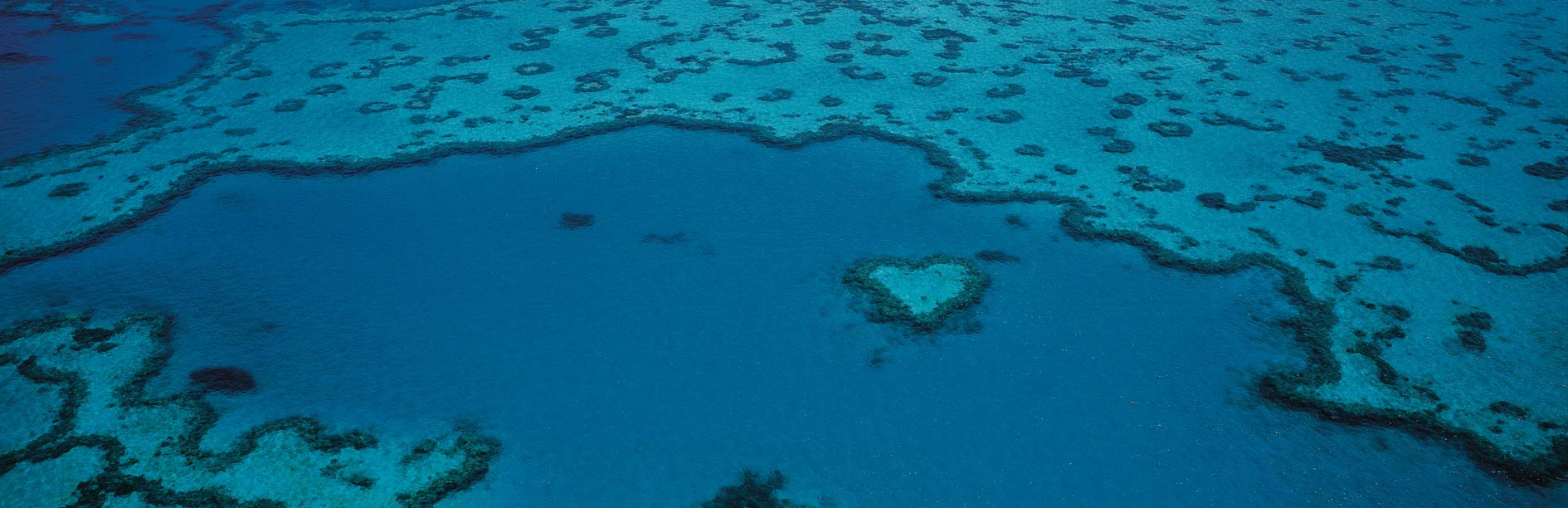 Heart Reef, Whitsundays Queensland Australia