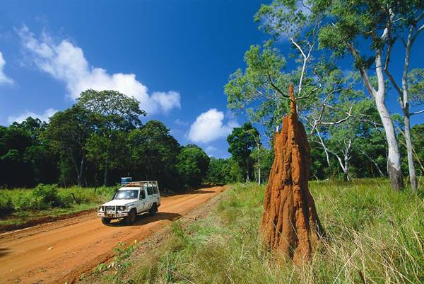 Tropical North Queensland Drives