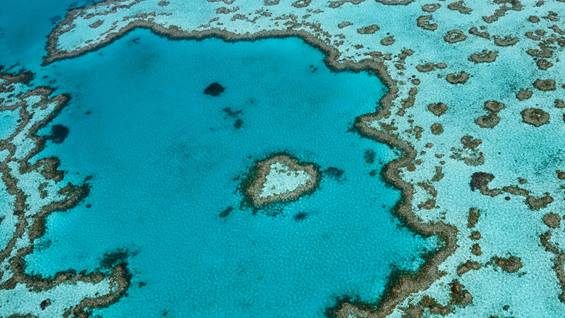 Heart Reef, The Whitsundays