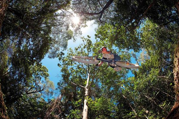 5 places to go mountain biking in Cairns